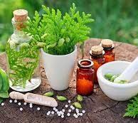 Combining Traditional Medicine with Holistic Medicine