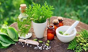 Combining Traditional Medicine with Holistic Medicine